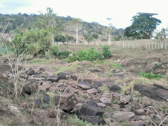 Rio Almada sofre efeitos de 6 meses de seca na região cacaueira.