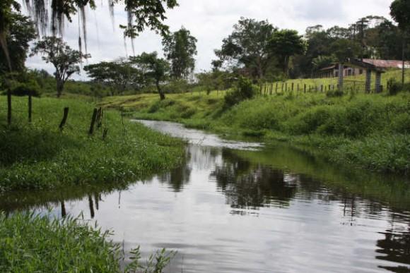 Chuva melhora nível do Rio Almada na região entre Itajuípe e Coaraci (Foto Marcos Japu)
