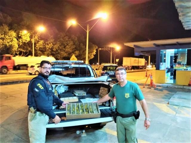 HOMENS SÃO PRESOS TRANSPORTANDO 450 PÁSSAROS EM CARRO ROUBADO DE LOCADORA