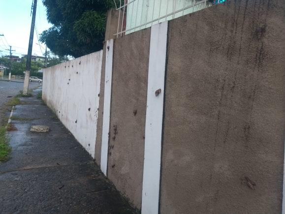 ITABUNA: MORADORES DENUNCIAM INFESTAÇÃO DE CARAMUJOS AFRICANOS NO JARDIM VITÓRIA